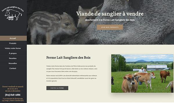 Conception site web Saint-Camille